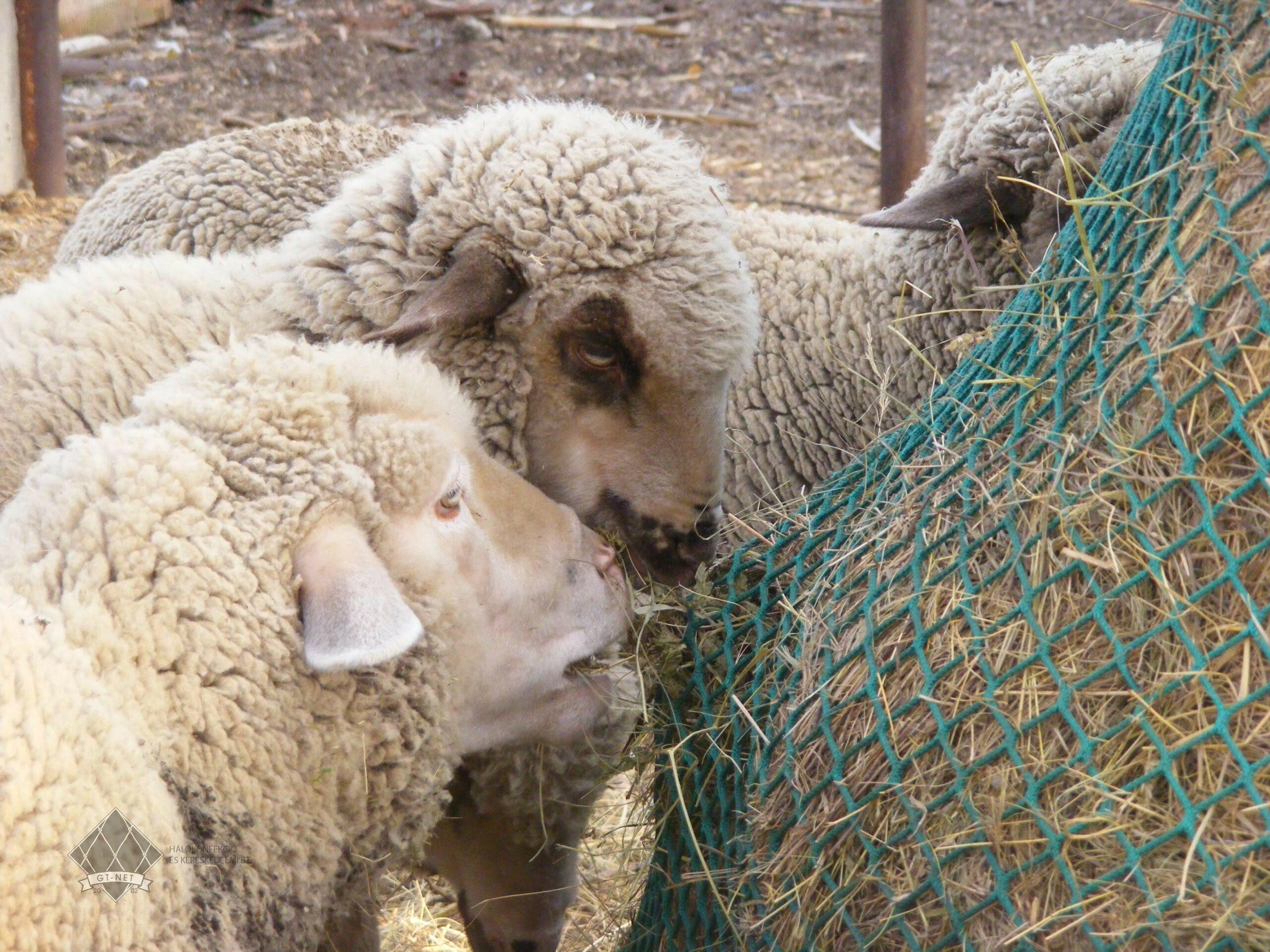 078 Szénaháló körbálára - juhok takarmányozására